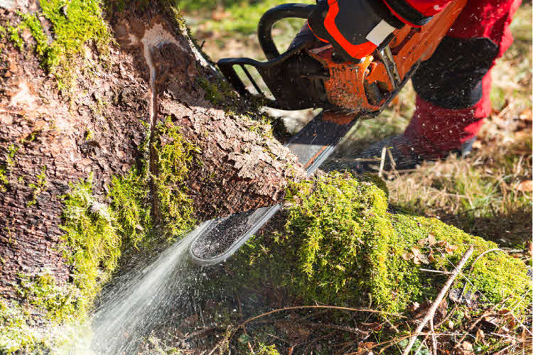 Ground Maintenance Solutions from Men for all Seasons